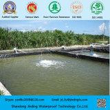 Forro da lagoa do HDPE usado no forro da piscina