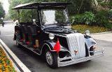 Buggy classico elettrico di Seater del nero 8