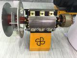 Gerador de C.A. da isolação da classe de IP44 H/alternador Synchronous