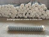 Treillis métallique galvanisé de maillon de chaîne (BAW-3)