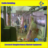 Matadouro Equipment para Cattle Abattoir Line