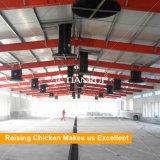 Casa de pollo prefabricada de la estructura de acero del bajo costo