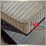 의자 (RS161803) 상점 발판 방석 옥외 가구 호텔 발판 상점 발판 거실 발판 대중음식점 가구 스테인리스 가구