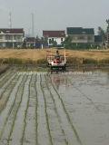 Reihen-Reis-Umpflanzer der Geschwindigkeit-6 (2GZ-6DK)