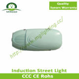 80W~150W IP65 Solar Induction Street Light mit 5 Years Warranty