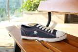 Hoogste Sell Mannequin Canvas Shoes voor Men (snc-02005)