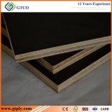 A película antiderrapante do tamanho padrão enfrentou a madeira compensada para a construção
