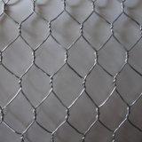 Rete metallica esagonale galvanizzata elettrotipia del pollo