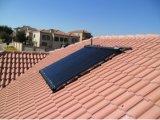 Coletor solar popular da fábrica nova de Shuaike
