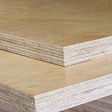madeira compensada do vidoeiro branco do núcleo do Poplar da alta qualidade de 12mm