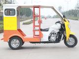 熱い販売法によってモーターを備えられる閉じる小屋の三輪車