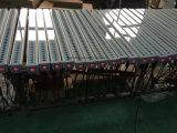 鋳造物ライト、汚れる舞台の背景36PCS X 1台のLEDのインポートLEDの壁の洗濯機に付き10W RGB 3台
