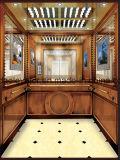 Lift van de Passagier van Aote de Hydraulische met Elegante Vorm (jq-MZ05)