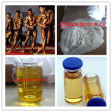 처리되지 않는 Durabolin 100mg/Ml Npp 주사 가능한 Nandrolone Phenylpropionate  Oil  보디 빌딩을%s
