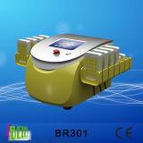 Laser intelligent portatif de Lipo de 176 diodes amincissant la machine