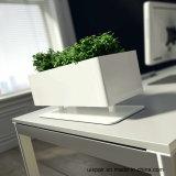 Crisol de flor de escritorio del cuadrado del acero de Uispair el 100% para la decoración del hotel del jardín de la oficina