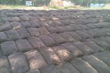Geobagの砂袋の保護袋の生長する袋