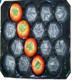 La talla colorida de las bandejas de los PP valida las bandejas de empaquetado de la fruta y verdura fresca de las bandejas de los PP de la orden de Custm