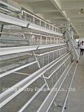 高品質3-4層のPoultyの農場の若めんどりのChicenのケージ