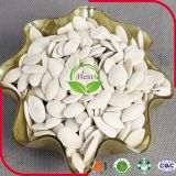 Семя тыквы 13mm кожи Shine AAA ранга