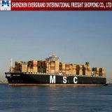Porta do frete de mar à porta de China aos EUA