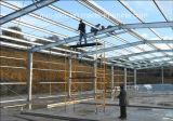 Bâtiment structural en acier Jdcc1025 d'entrepôt de coût bas