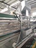 Alta calidad del tipo jaula automática de H del pollo de la capa