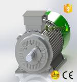 20kw 380V 판매를 위한 낮은 Rpm 영구 자석 동시 발전기