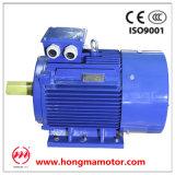 3hm de Elektrische AC Asynchrone Motor van de Inductie