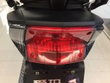 mini motocicleta 800W elétrica para adultos para a venda