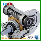 Worm Of gear, Worm Of gear Of motor, Worm Of gear Of reducer