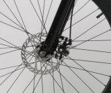 Bicis eléctricas de la montaña gorda del neumático del fabricante 1000W 48V