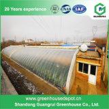 Venta caliente del invernadero agrícola Flor de Cine Verde Casa en Graden