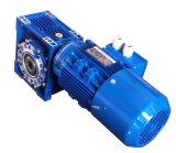 Caja de engranajes del gusano Nmrv063 con el eje de extensión y el motor eléctrico del sistema de frenos