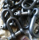 Forgeant le type JIS Large Dee Shackle