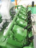 Sitio del generador del alternador del gas de la central eléctrica del biogás de la basura animal bio