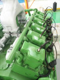 Tierabfall-Biogas-Kraftwerk-Biogas-Drehstromgenerator-Generator-Site