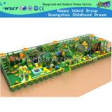 Venta caliente interior juego de la estructura infantil de patio de recreo (H14-0721)