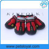 Les chaussures respirables de maille d'animal familier pour le crabot imperméable à l'eau amorce le Velcro r3fléchissant