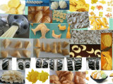 Gebratene knusperige Reis-Imbiss-Nahrungsmittelaufbereitende Zeile