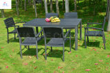 Sale caldo Plastic Wood Furniture Outdoor Furniture per Dinner Wood Furniture