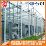 Commercial Multi - Span Garden Glass Greenhouse
