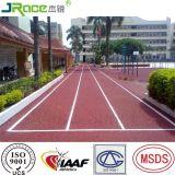 Изготовление Гуанчжоу ведущий Jogging следа для парка