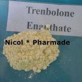 Polvere grezza scura di Trenbolone Enanthate della polvere di Trenbolone Enanthate di colore giallo 99.12%
