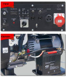 benzina del blocco per grafici aperto 10kw/generatore elettrici della benzina con il prezzo competitivo
