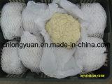 Chou-fleur de blanc chinois avec l'emballage de carton
