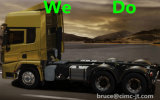 Shacman F3000 Heavy Truck per Tractor/Trailer Truck