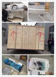 Bois de la qualité 4*8'/métal/machine de gravure en pierre à vendre