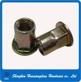 Verzinkter Stahl knorrige Rumpf-Gewinde-flache Hauptniet-nuß