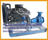 디젤 엔진 수도 펌프 슬러리 펌프 잠수정 펌프